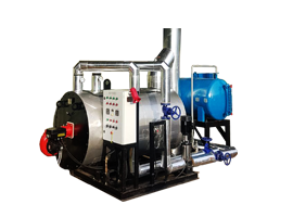 Jual Hot Water boiler Gas-LPG-PGN-CNG-Solar